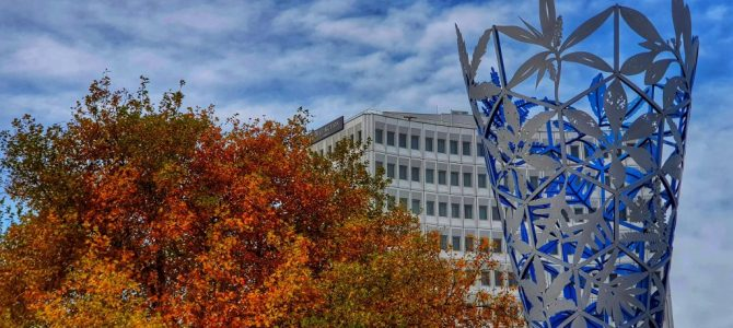 'Thousands use Air New Zealand credit tool'