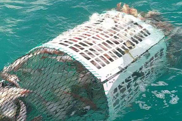 Engineering a more sustainable future for commercial fishing